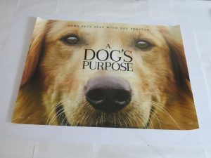 A DOGS PURPOSE | UK Quad | Original Movie Poster