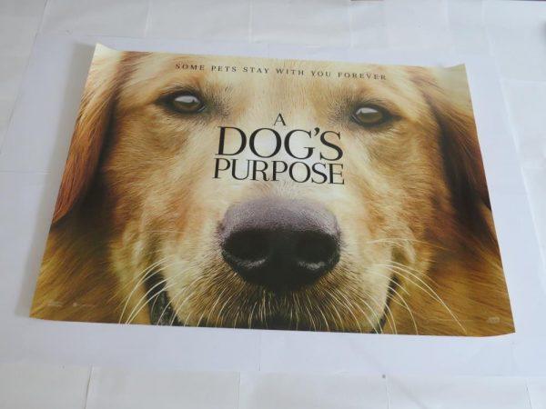A DOGS PURPOSE | UK Quad | Original Movie Poster
