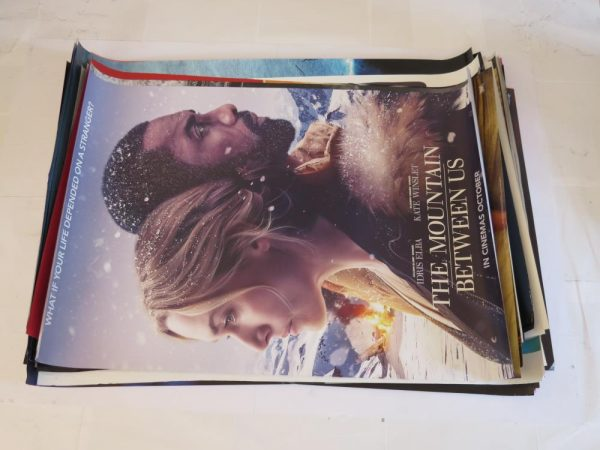 THE MOUNTAIN BETWEEN US | One Sheet | Original Movie Poster